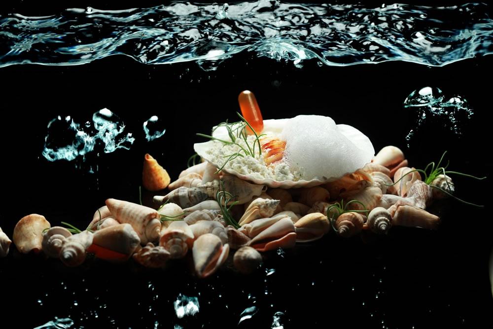 Przegrzebek w morzu
